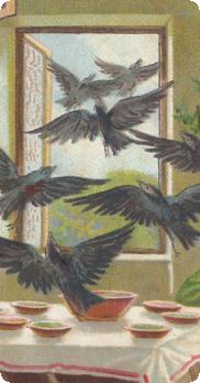 7_corvi_lunghe
